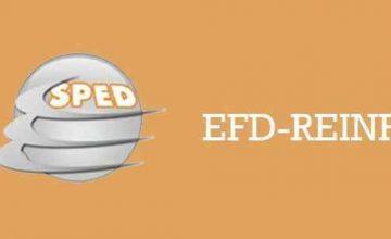 Obrigatoriedade da EFD-Reinf para empresas do Simples Nacional: confira as perguntas mais frequentes