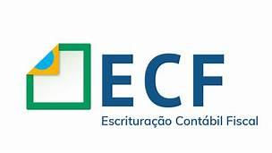 ECF: Prazo para entrega termina em julho